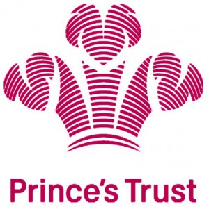 prince s trust business plans